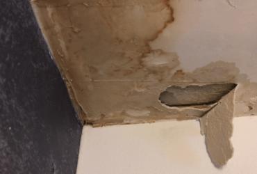 Rotting in Ceiling Corner